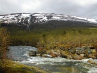 Top 5 National Parks Listed as a World Heritage Site in Sweden