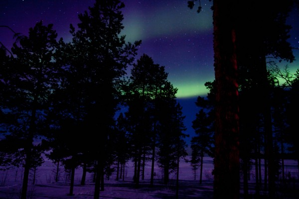 Northern Lights Tri /Flickr
