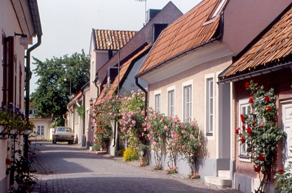Typical Visby street roger4336/Flickr
